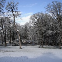 Winter Haiku:  Add your own!