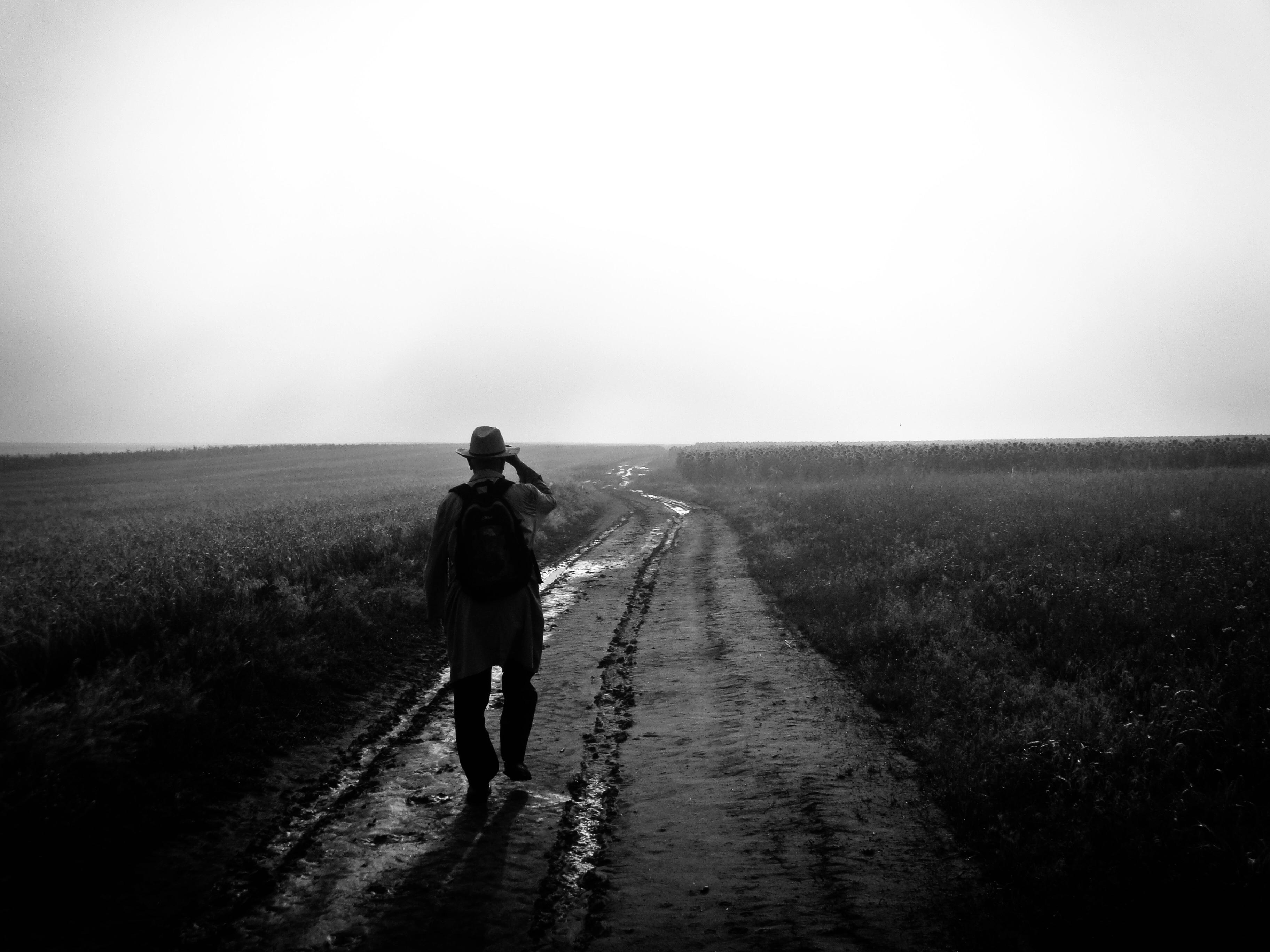 man walking in rice field