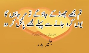 love poetry sms with pics