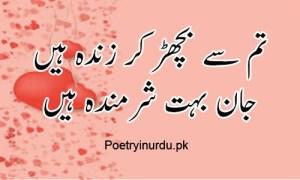 love shayari two line
