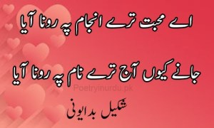 poetry of love in urdu