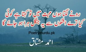 sad poetry in urdu 2 lines about life