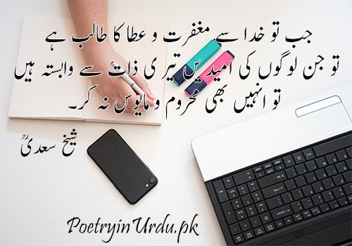 urdu sayings