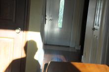 Self-portraits in shadow...