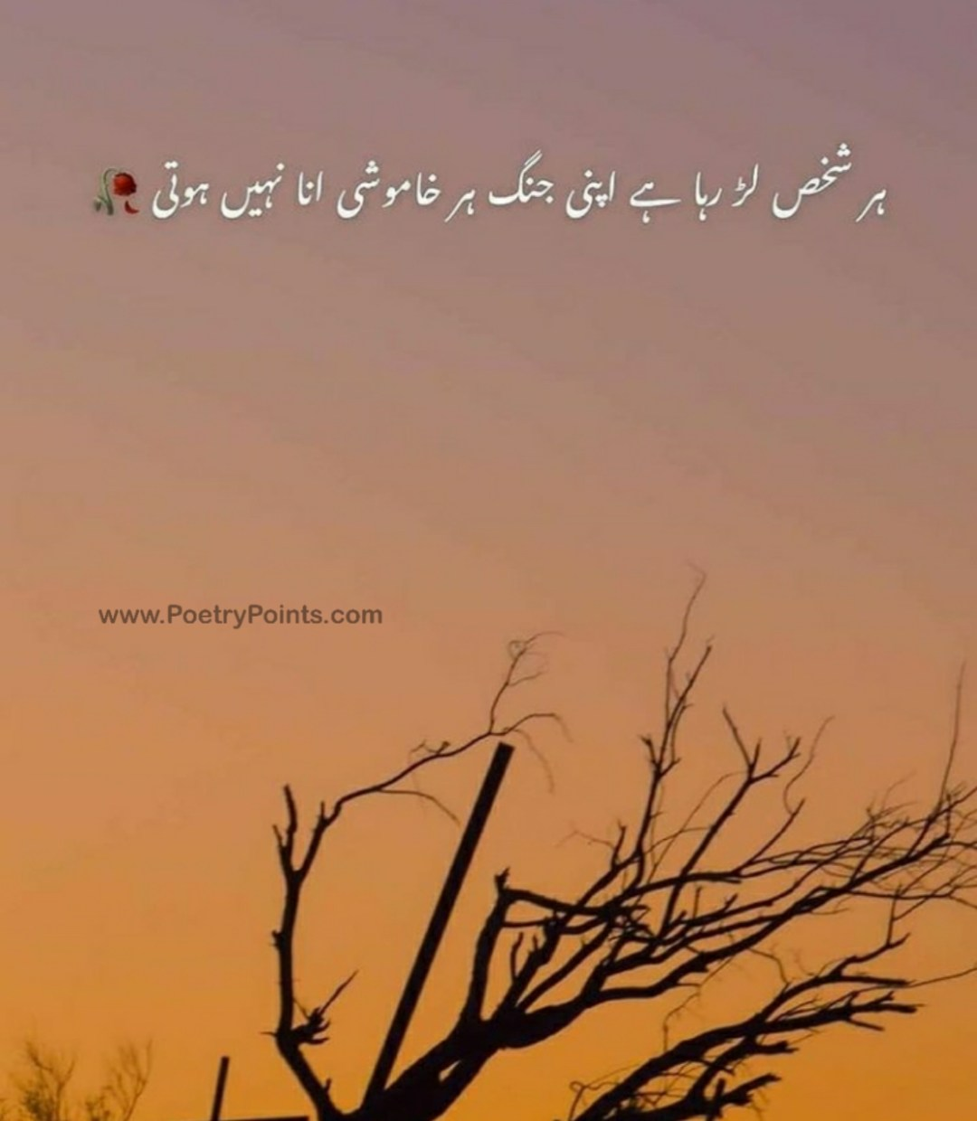 khamoshi poetry