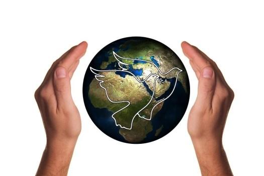 The World I Wish
