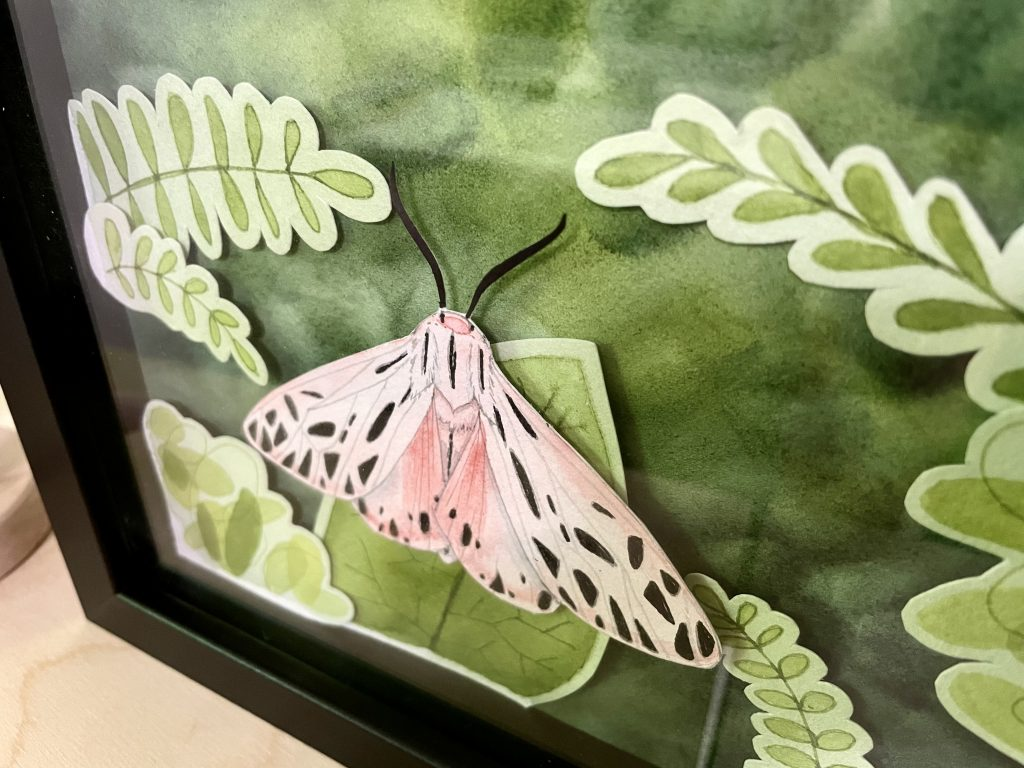 Pink Moth shadow box art