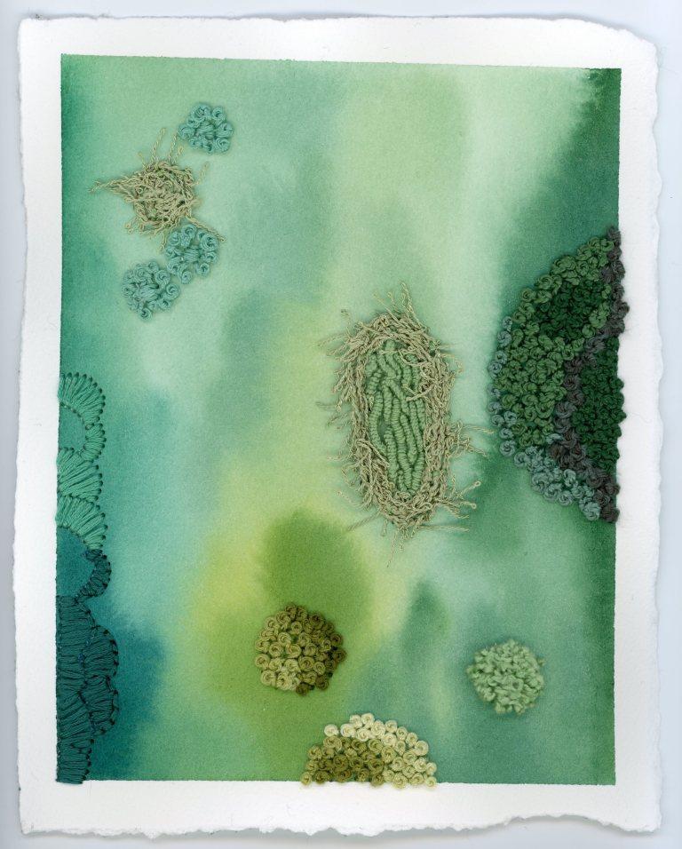 Moss & Lichen multimedia art