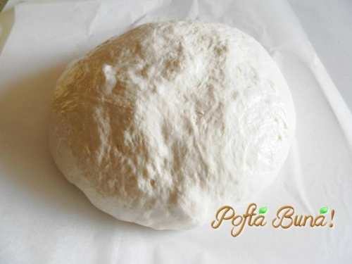 paine-neframantata-pofta-buna-gina-bradea (7)