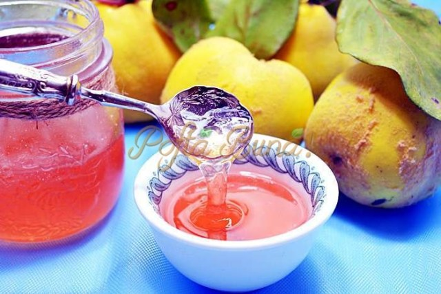 Peltea-de-gutui-pofta-buna-cu-gina-bradea (1)