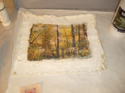 Fall picture transfered to muslin, lined with lace pieces and puff painted