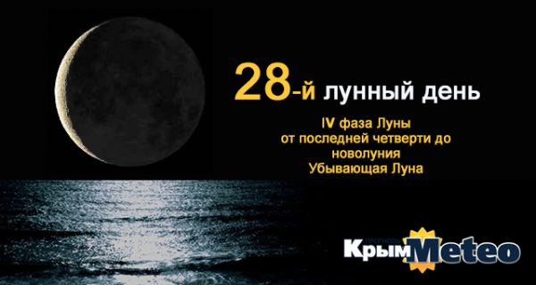 Сегодня - 28 лунные сутки. Что посеяли, то и пожнёте