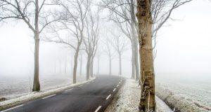 15 января - Сильвестров день. Морозы, говорят, крепчают