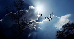 24 февраля - День Власия. Солнце поворачивает на весну