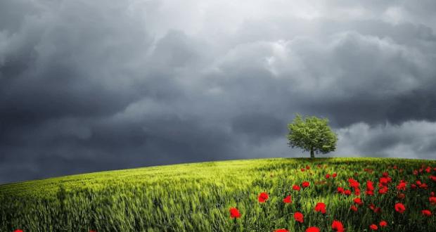 8 мая - Марков день. Ключник отмыкает небо