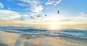 21 августа – день Мирона Ветрогона. Ловите ветер - загадывайте желания