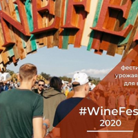 Фестиваль WineFest-2020 в Севастополе. Программа