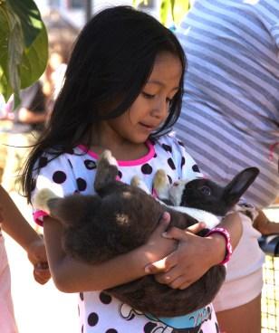 Small Animal Petting Zoo at Elm
