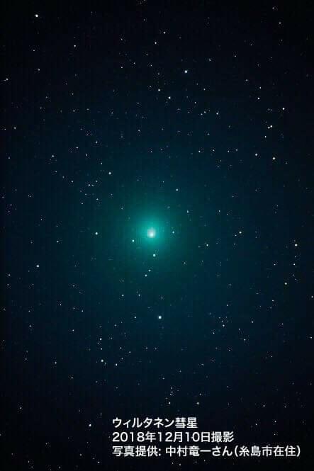 ウィルタネン彗星 photo R.Nakamura 撮影地 糸島市