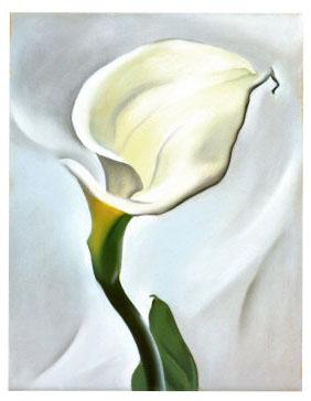 georgia-okeeffe-calla-lily-turned-away-1923