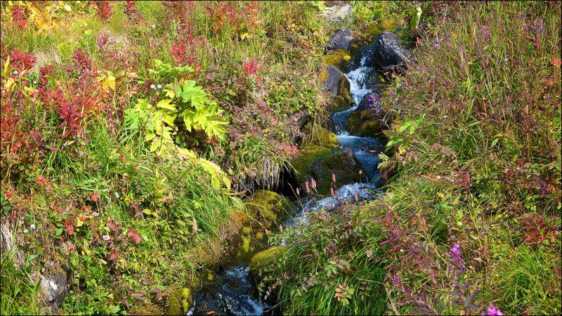 Chugach State Park AK by JJ