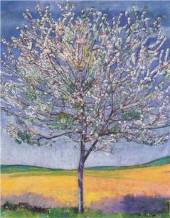 """Cherry Tree in Bloom"" (1905, oil on canvas)by Ferdinand Hodler"
