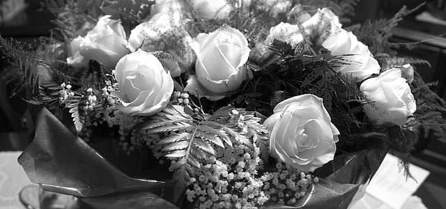 Σαν δέσμη από τριαντάφυλλα (Καρυωτάκης, Πλάτωνος, Γιαννάτου)