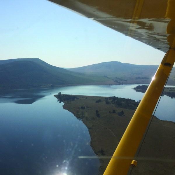 aerialNT2