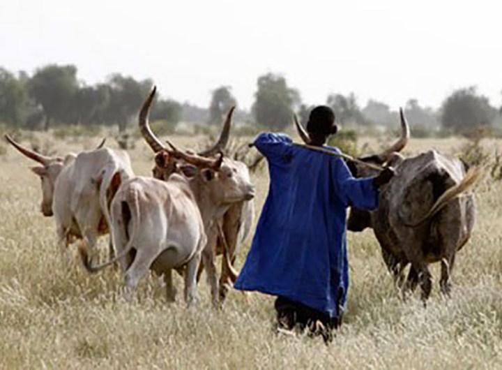 declaration-agriculteurs-eleveurs-pour-le-respect-de-l-environnement-mauritanie