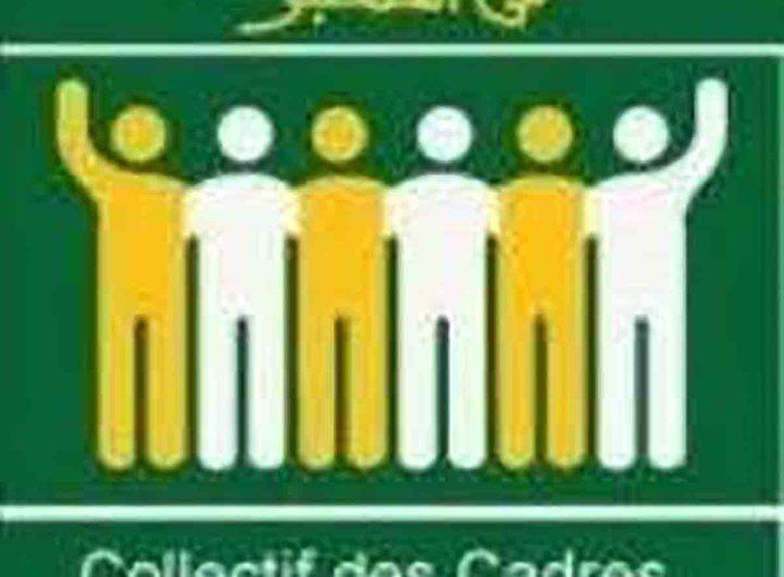Communiqué du CCME sur l'adoption de la loi sur la double nationalité
