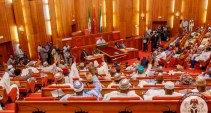 Image result for Senate Nigeria
