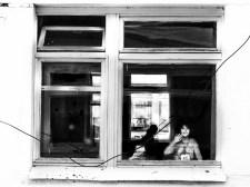 windows 02