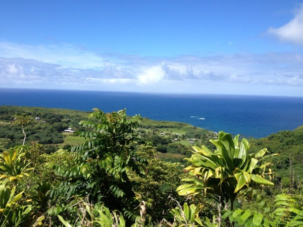 Hana Highway Maui