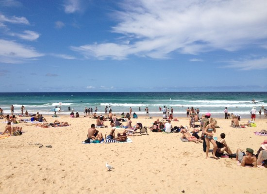 Manly Beach New South Wales Sydney Australia