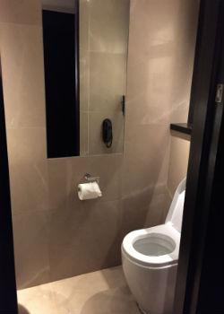 "The ""airplane bathroom"""