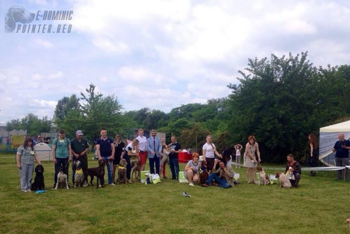 выставка собак в Днепроптровске