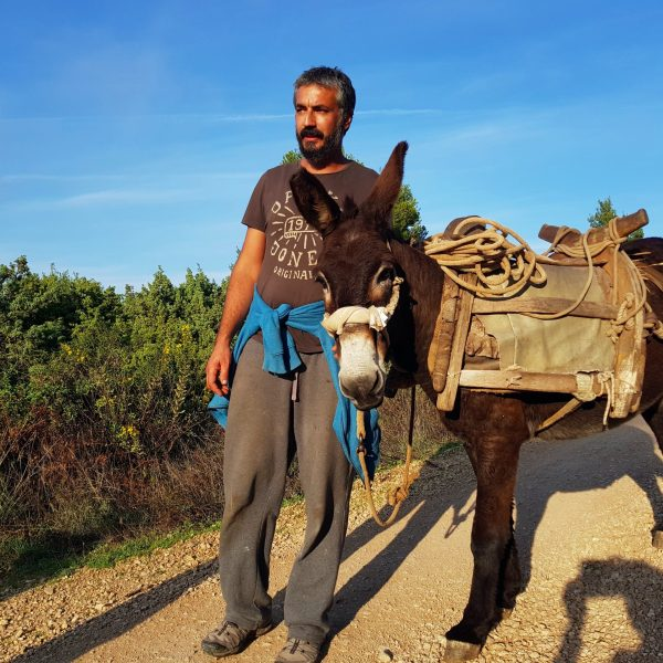 man-donkey-pointers-travel