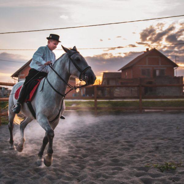 horseback-riding-nijemci-pointers-travel