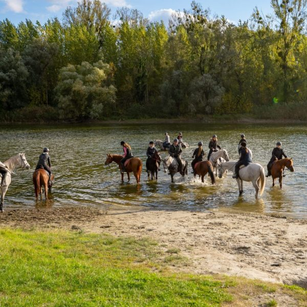 Equestrian tour