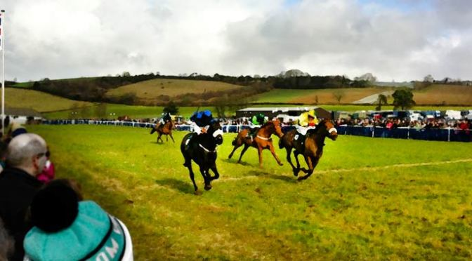 South Pool Harriers, Buckfastleigh, Entries and Form