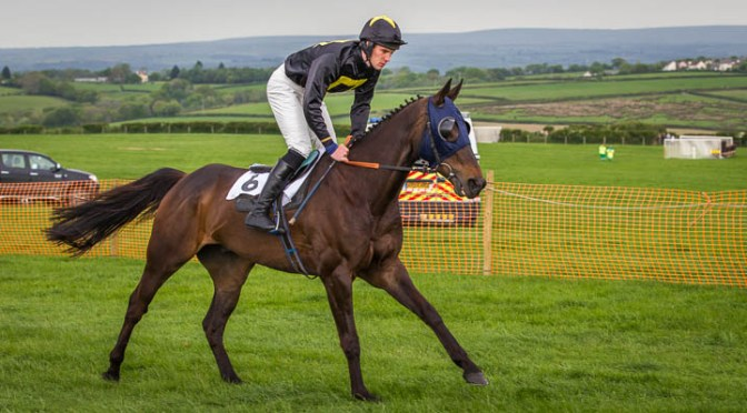 Preview: Stevenstone Point-To-Point, Vauterhill, Monday May 5th