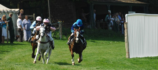 Dartmoor Point-To-Point entries and form