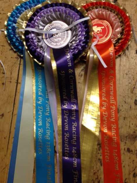 Rosettes for the area finals were sponsored and made by Amanda Darke of Devon Rosettes