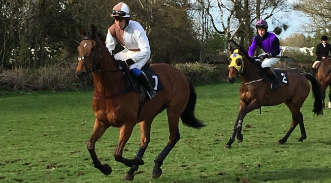 REPORT ON THE AXE VALE HARRIERS POINT-TO-POINT AT STAFFORD CROSS SUNDAY 24TH APRIL 2016