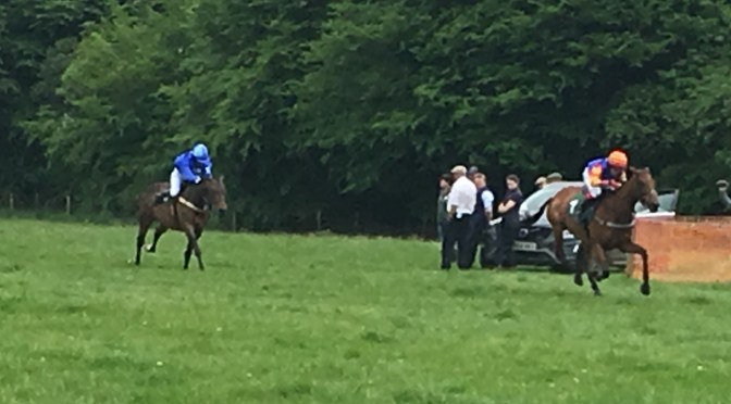 Reports and Results: South Tetcott Point-to-Point – Upcott Cross Monday 29 May 2017