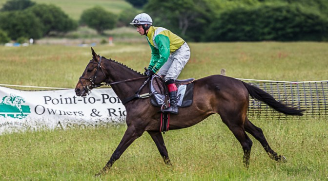 REPORT: TIVERTON STAGHOUNDS POINT-TO-POINT AT BRATTON DOWN, SUNDAY 10th JUNE 2018
