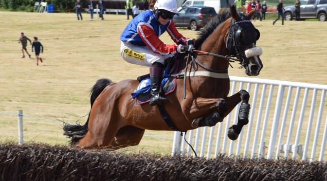 Overview of the Torrington Farmers Point-To-Point at Umberleigh
