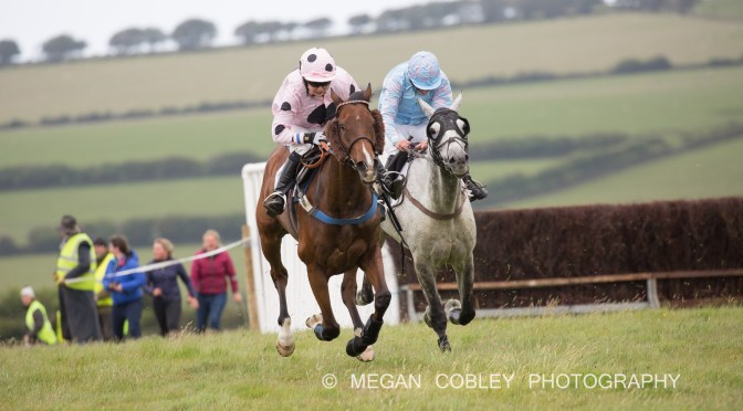 Preview: Tiverton Staghounds Point-to-Point, Bratton Down, Bratton Fleming, Sunday 9th June 2019