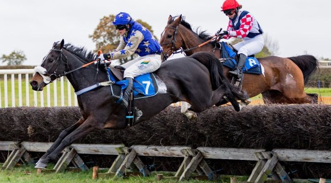 PPA: POINTING TO PAUSE AGAIN, Weatherbys Point-to-Point, Weatherbys Point-to-Point
