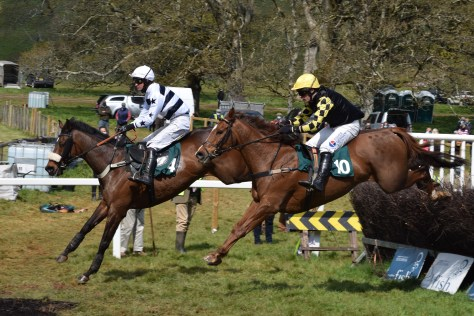 Dr Time ridden by James King (farside) flanked by Thewinnertakeitall and Darren Edwards (nearside) on his way to winning the Restricted